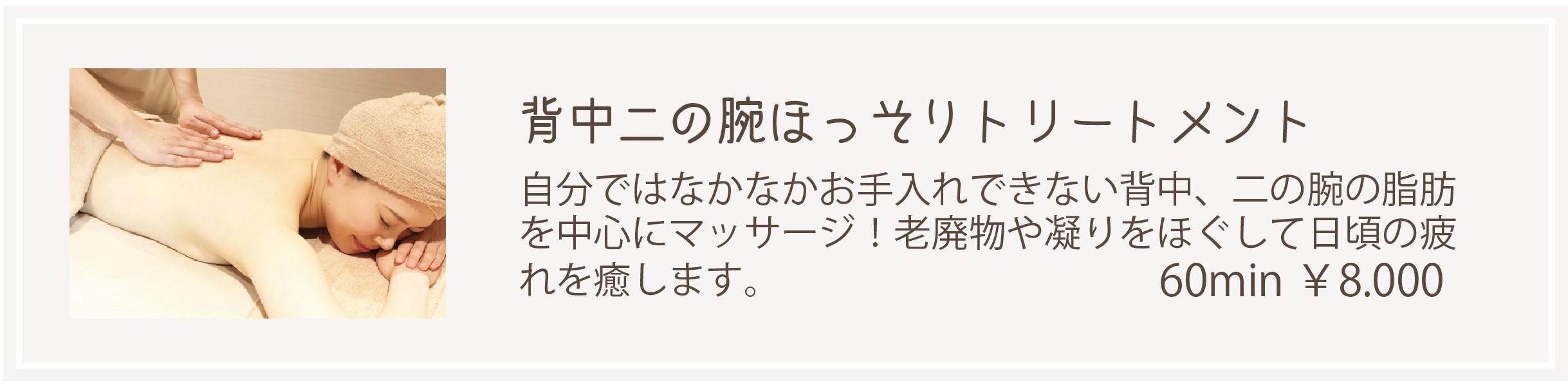 ボディメニュー (3)
