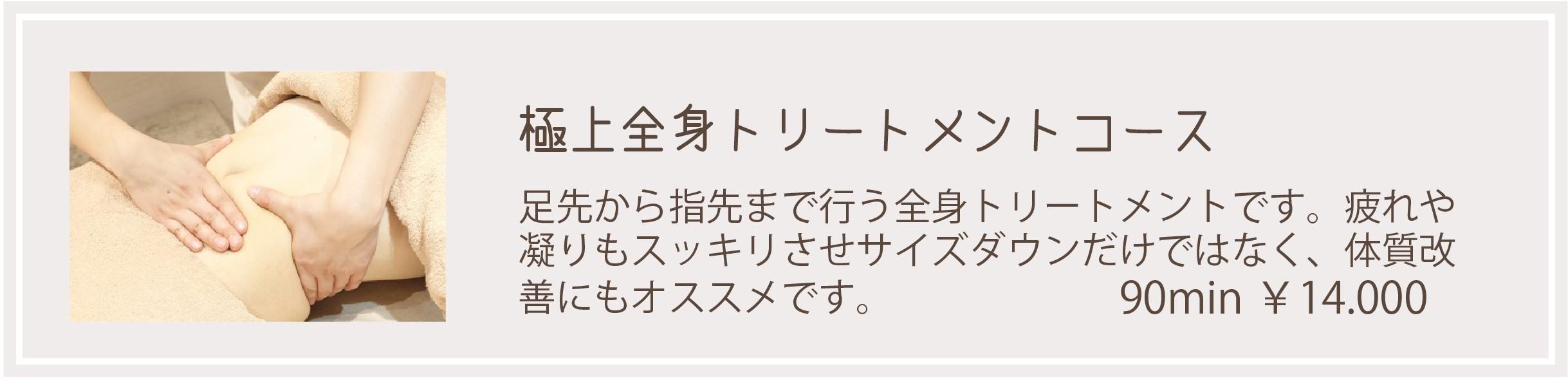 ボディメニュー (5)