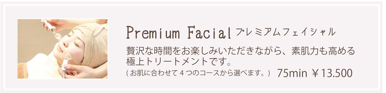 フェイシャルメニュー (5)